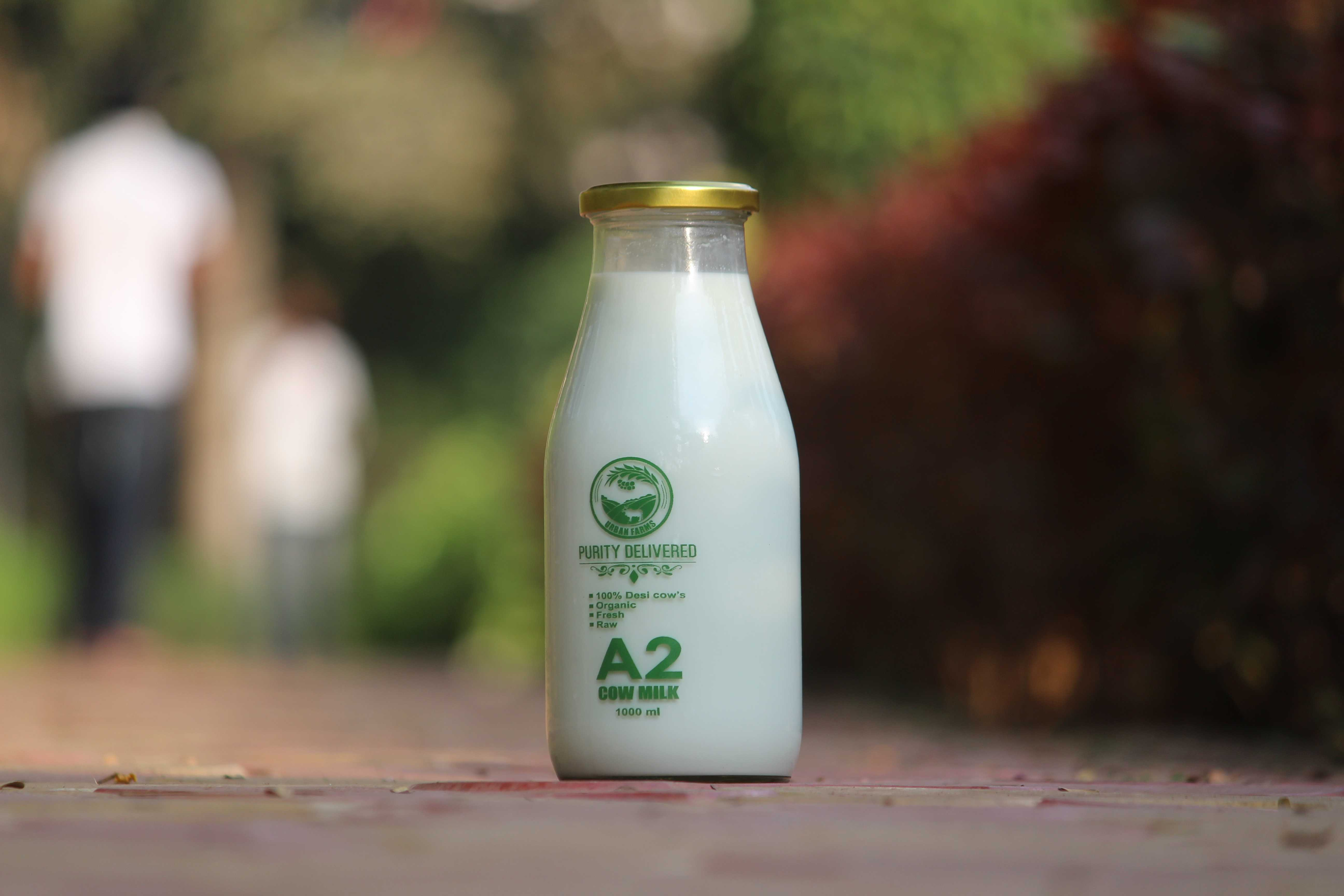 Desi Fresh Cow Milk In Pune