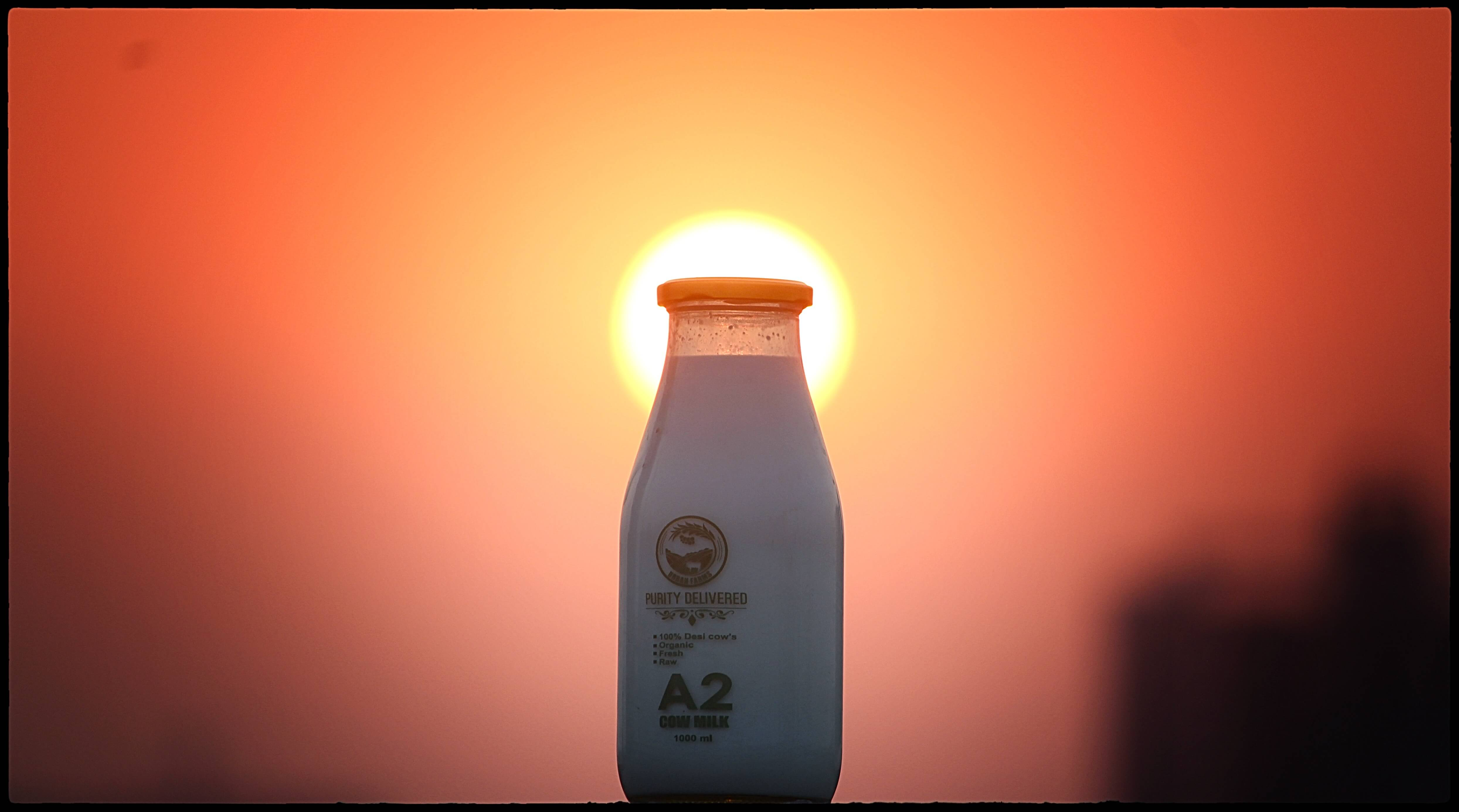 A2 Fresh and pure Cow Milk Supplier in pune