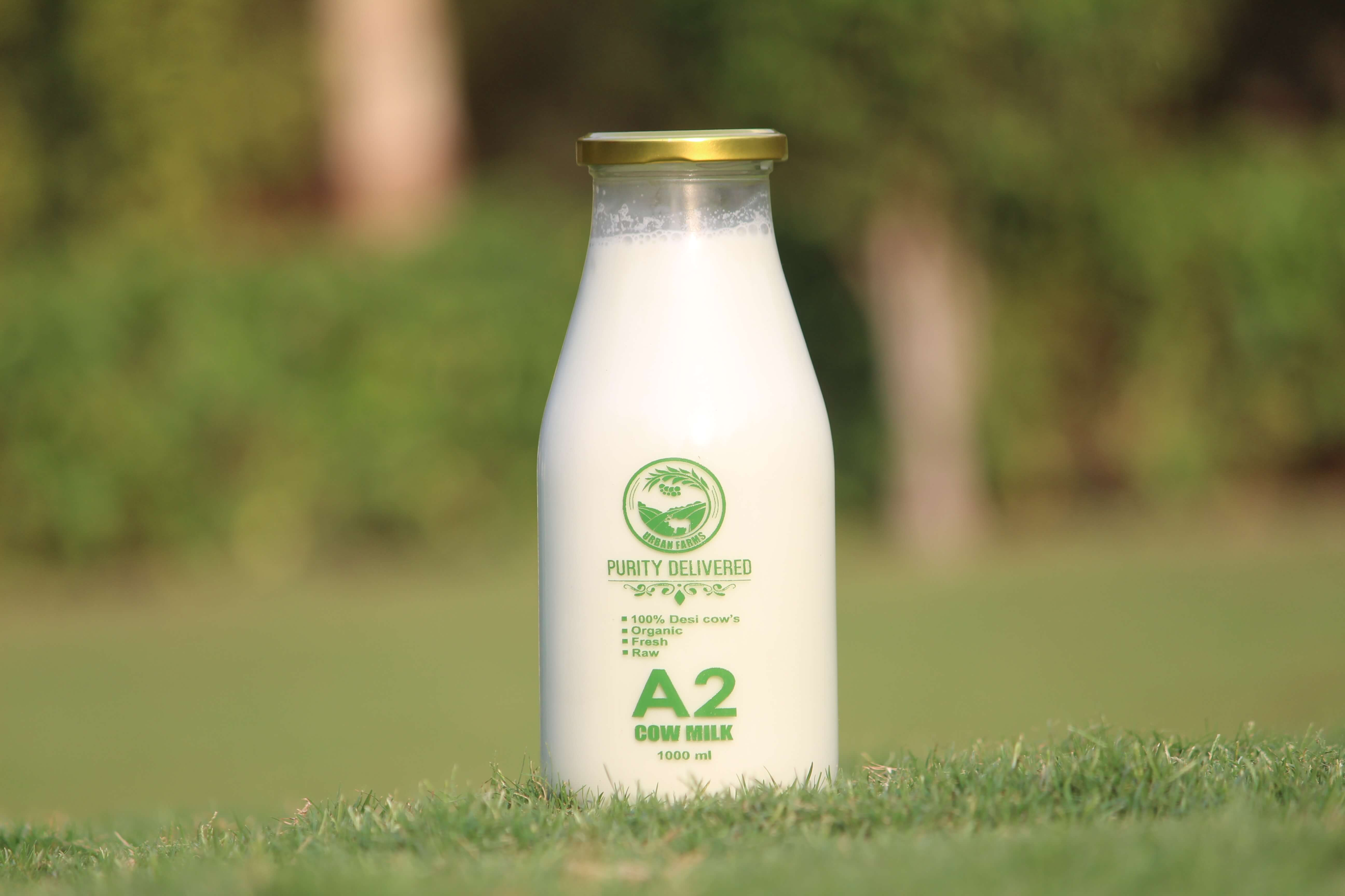 Pure A2 Cow Milk In pune